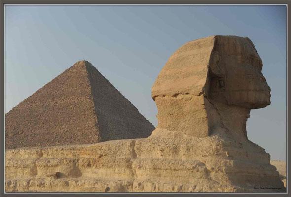 EG010.Pyramide und Sphinx.Gizeh