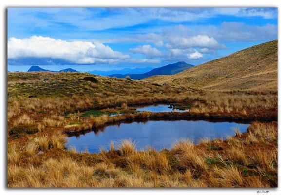 NZ0502.Kahurangi N.P.Tarns at Sylvester Lake
