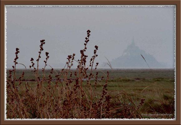 A0131.Mont St.Michel.FR