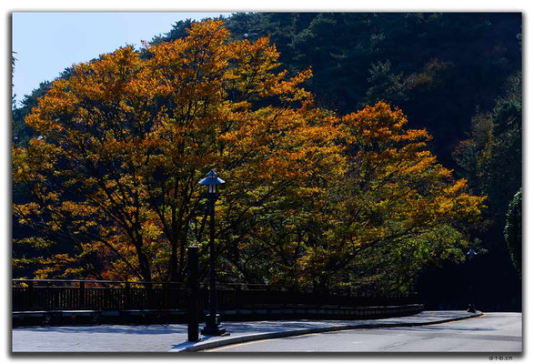 KR0277.Busan.Taejongdae Resort