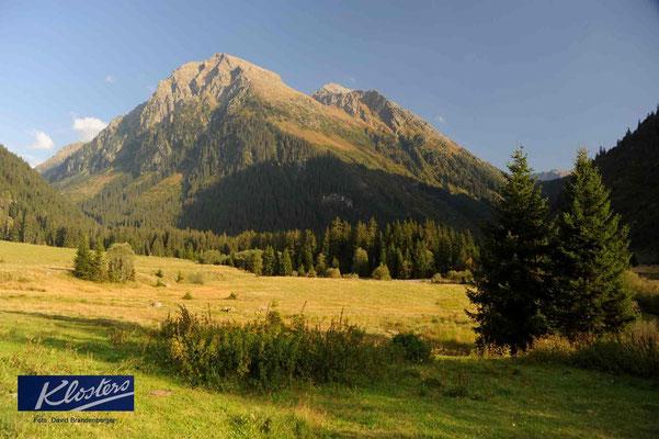 P0042.Alp Garfiun.Klosters.CH