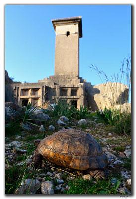 TR0218.Xanthos.Nekropolis