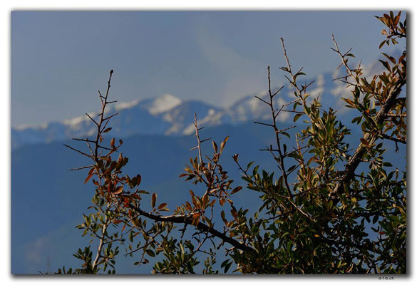 GR0169.Mt.Olympus