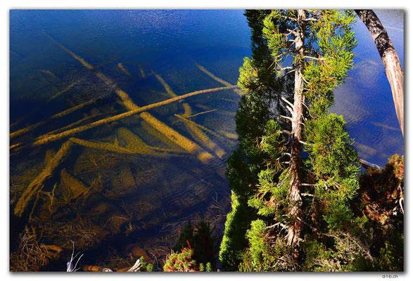 AU1308.Mt.Field N.P. Lake Dobson