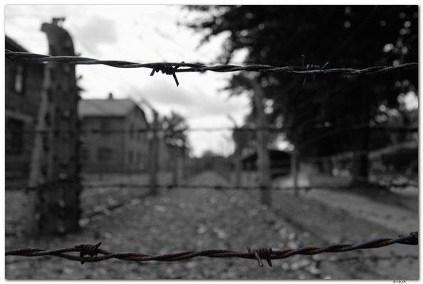 PL025.Auschwitz.Stacheldraht