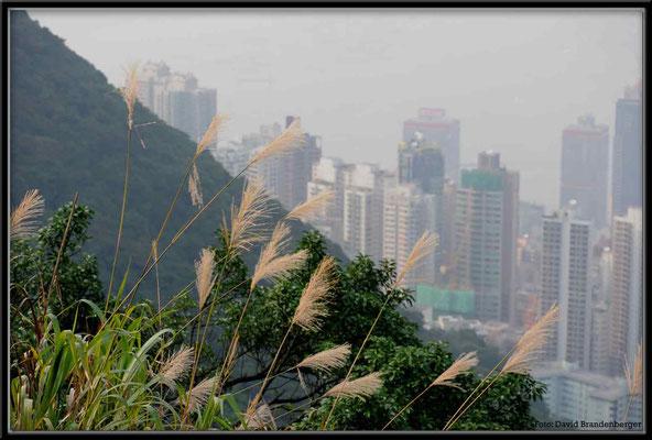 C2714 Hong Kong Victoria Peak