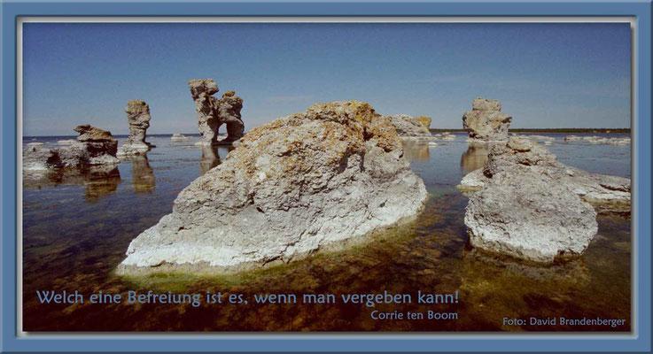 S0075.Rauk.Hund,Gotland,SE.Text: Corrie Ten Boom