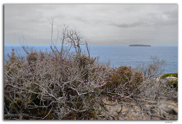 AU1014.Coffin Bay N.P. Point Avoid