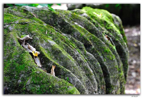 NZ0557.Labyrinth Rocks