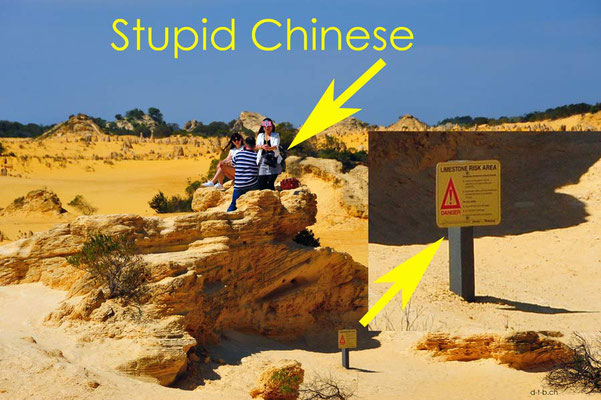 Australien.Pinnacles.Nambung N.P. Stupid Chinese1