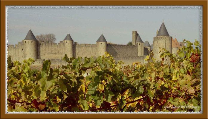A0129.Carcassonne.FR