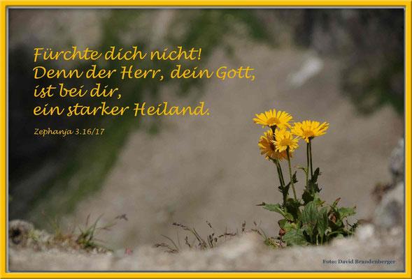 S0110.Scharte.Klosters,CH.Zephania 3.16/17