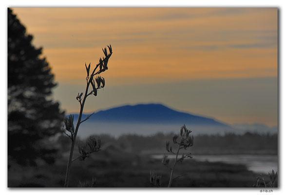 NZ0970.Christchurch.Hibburt Park.Mountain view