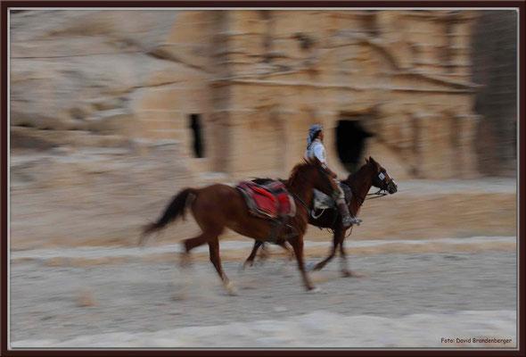 JO046.Pferdeführer.Petra