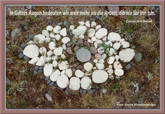 S0065.Steinauge.Gotland,SE.Text: Corrie Ten Boom