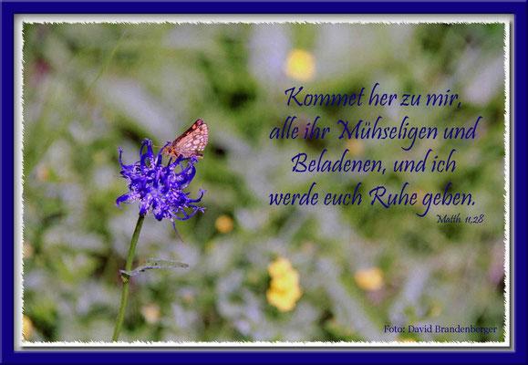 S0021 Rapunzel mit Schmetterling,Flims,CH.Matthäus 11.28