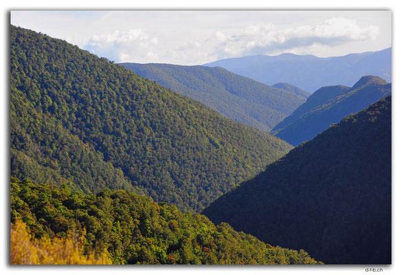 NZ0542.Kahurangi N.P.Takaka River Valley downstream