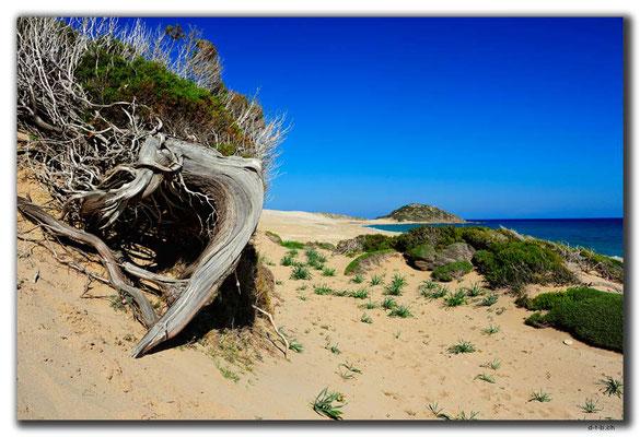TR0592.Golden Beach