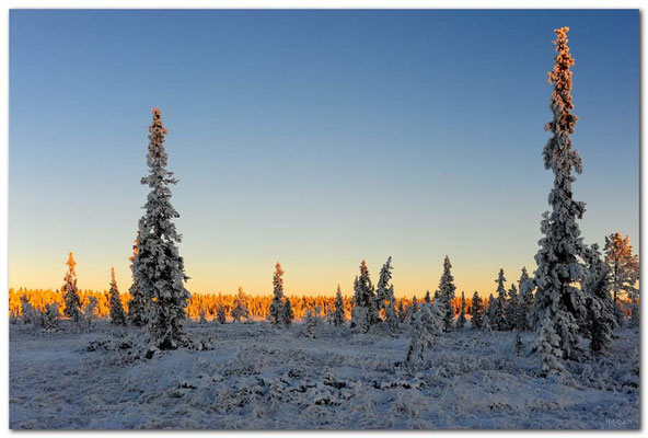 SE0100.Lapland Wilderness