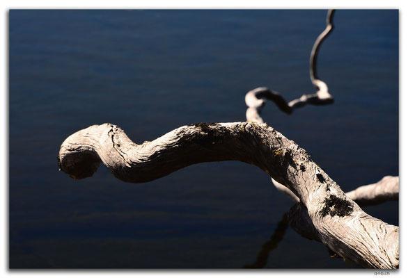 AU1307.Mt.Field N.P. Lake Dobson