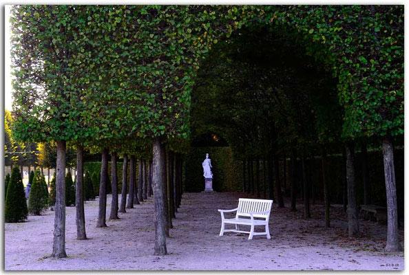 DE206.Schwetzingen.Schlossgarten