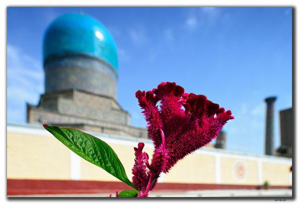 UZ0017.Samarkand.Registan
