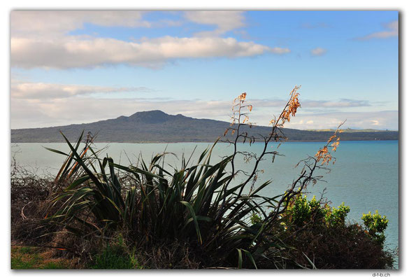 NZ0049.Rangitoto Island