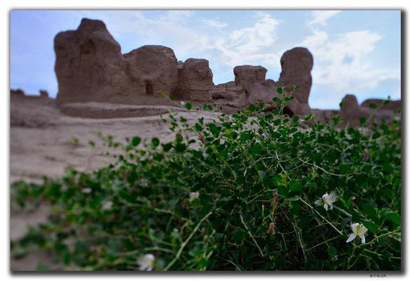 CN0044.Jiaohe Antike City