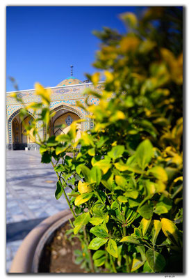 IR0390.Mashhad.Holy Shrine