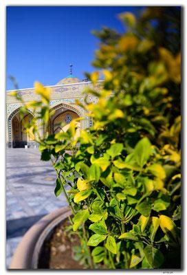 IR0390.Mashhad.Holy Shrine