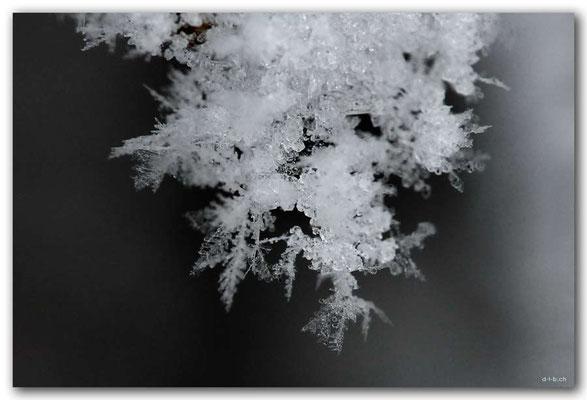 SE0091.Schneekristalle