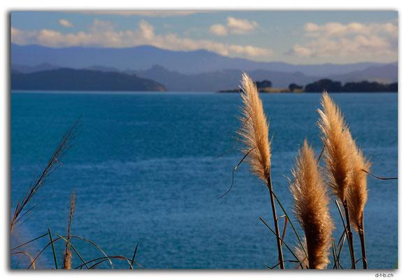 NZ0091.Hokianga Harbour