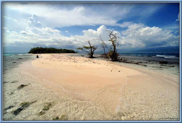 JM124.Lime Cay