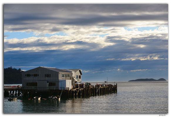 NZ0853.Stewart Island.Oban.Harbour