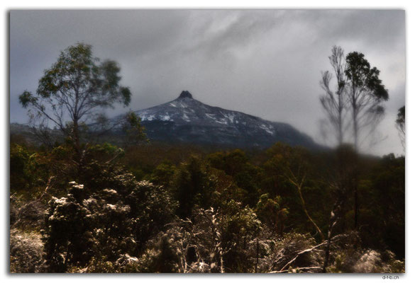 AU1381.Overland Track.Mt.Pelion East