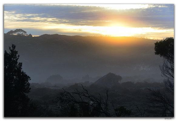 AU1360.Overland Track.Windemere Hut.Morning Mist