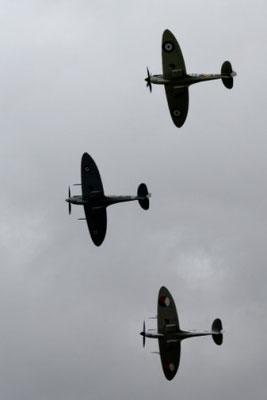 L116 Spitfires