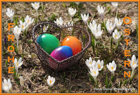 T010.Ostern
