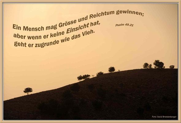 S0119.Mount Nebo.JO.Psalm 49.21
