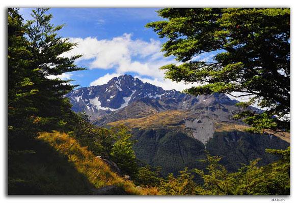NZ0650.Nelson Lakes N.P.Mt.Hopeless 2278m