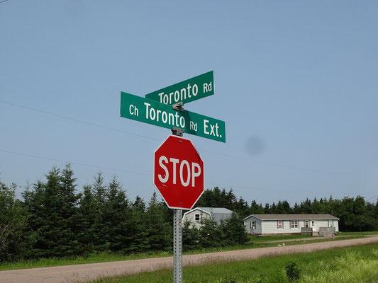Zwischenstopp in Toronto auf Prince Edward Island: Ich hatte Toronto irgendwie grösser in Erinnerung...