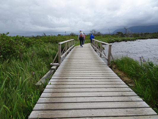 Gros Morne National Park in Neufundland: Holzplanken überbrücken sumpfiges Gebiet auf dem Weg zum Western Brook Pond.
