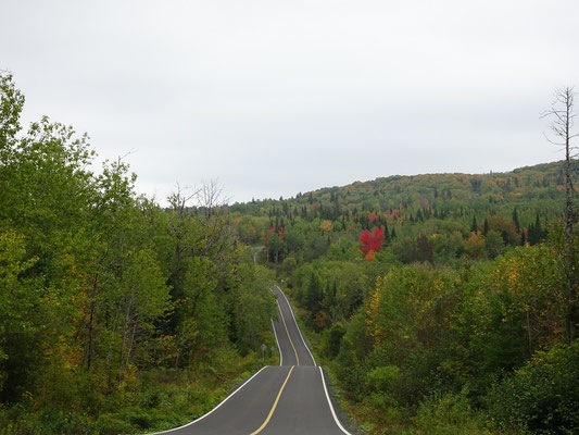 Urlaub in Quebec: Fahrt durch den dicht bewaldeten Lac Temiscouata Naturpark.