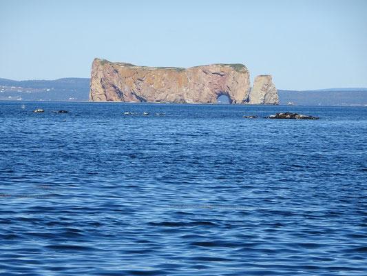 Urlaub in Quebec: Nach der Umrundung der Bonaventure Insel kommt bei der Bootstour der Rocher Percé wieder in Sicht.
