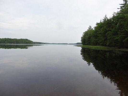 Paddeln im Kejimkujik National Park: Uferblick vom der Campsite.