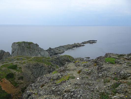 Urlaub in Neufundland: Felsen an der Steilküste nahe Twillingate.