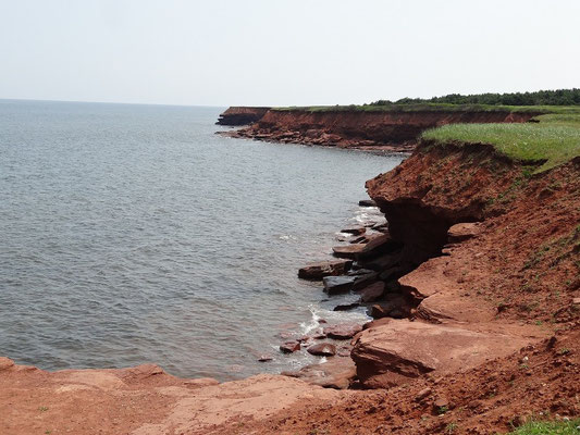 Rote Steilküste im im Prince Edward Island National Park.