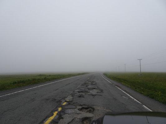Urlaub in Neufundland: Nebel und zum Teil sehr schlechte Strassen gehören dazu. Dieses Bild zeigt den besseren Abschnitt der Landstrasse 100.
