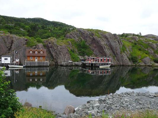 Urlaub in Neufundland: Häuser am Wasser in Quidi Vidi