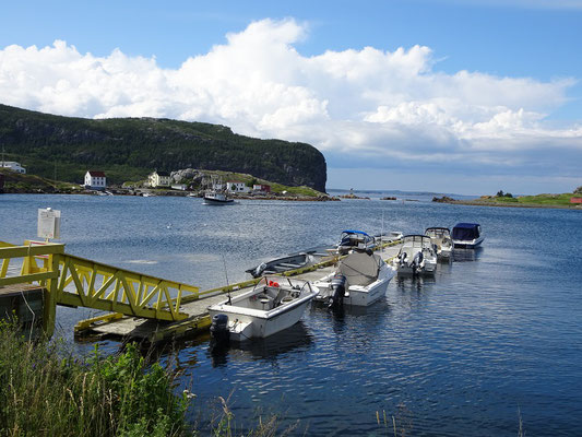 Urlaub in Neufundland: Boote im Hafen von Salvage.